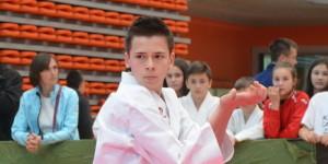 karate c