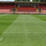 stadion trava juni